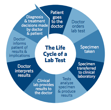 Life Cycle of a Lab Test